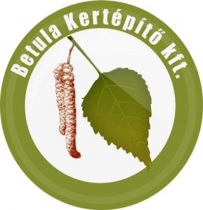 Betula kft. logó
